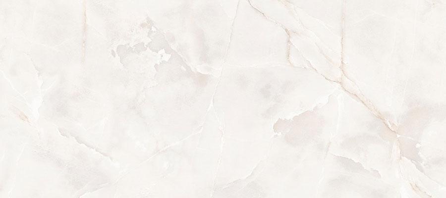 1. Onyx Elegance Polished 60x120 1