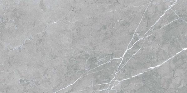 1. Polished Grey 60x30 1