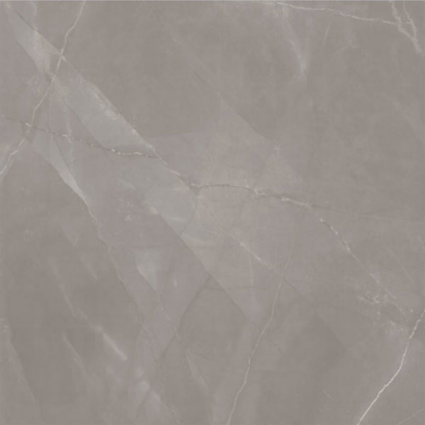 2. Bello Gris Polished 120x120 1