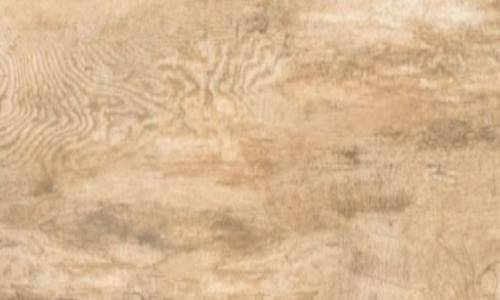 3. Rustic Brown Wood NS